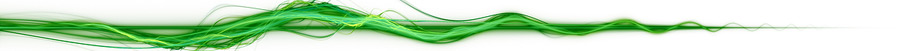 divider-green-900