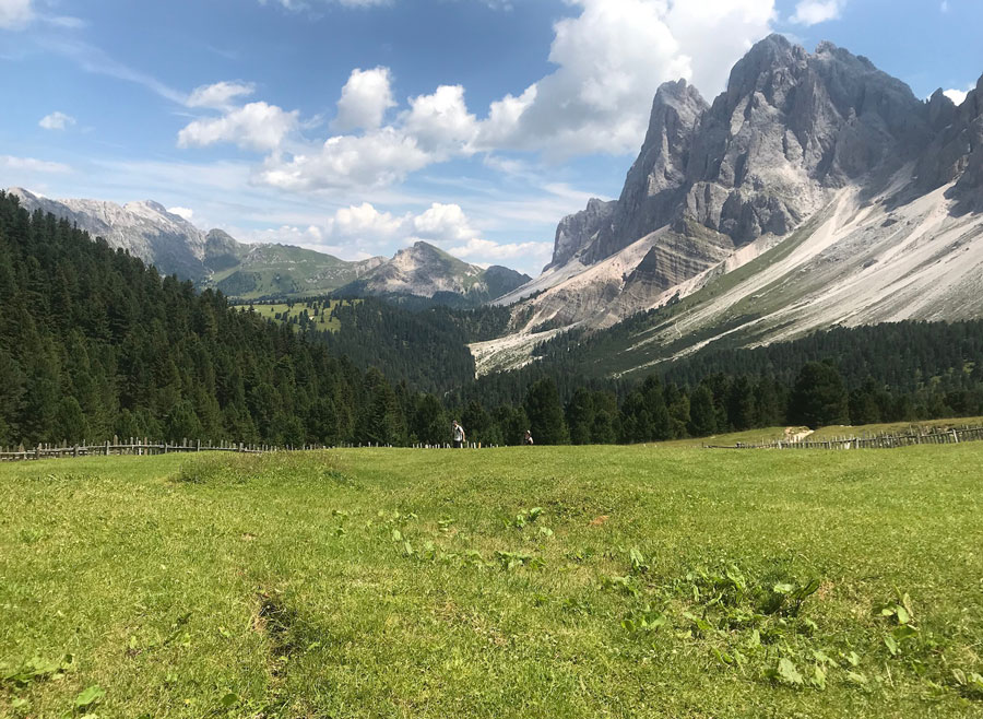 Meadows and mountains: The Dolomites.